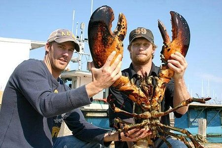 Two fisherman holding a large lobster